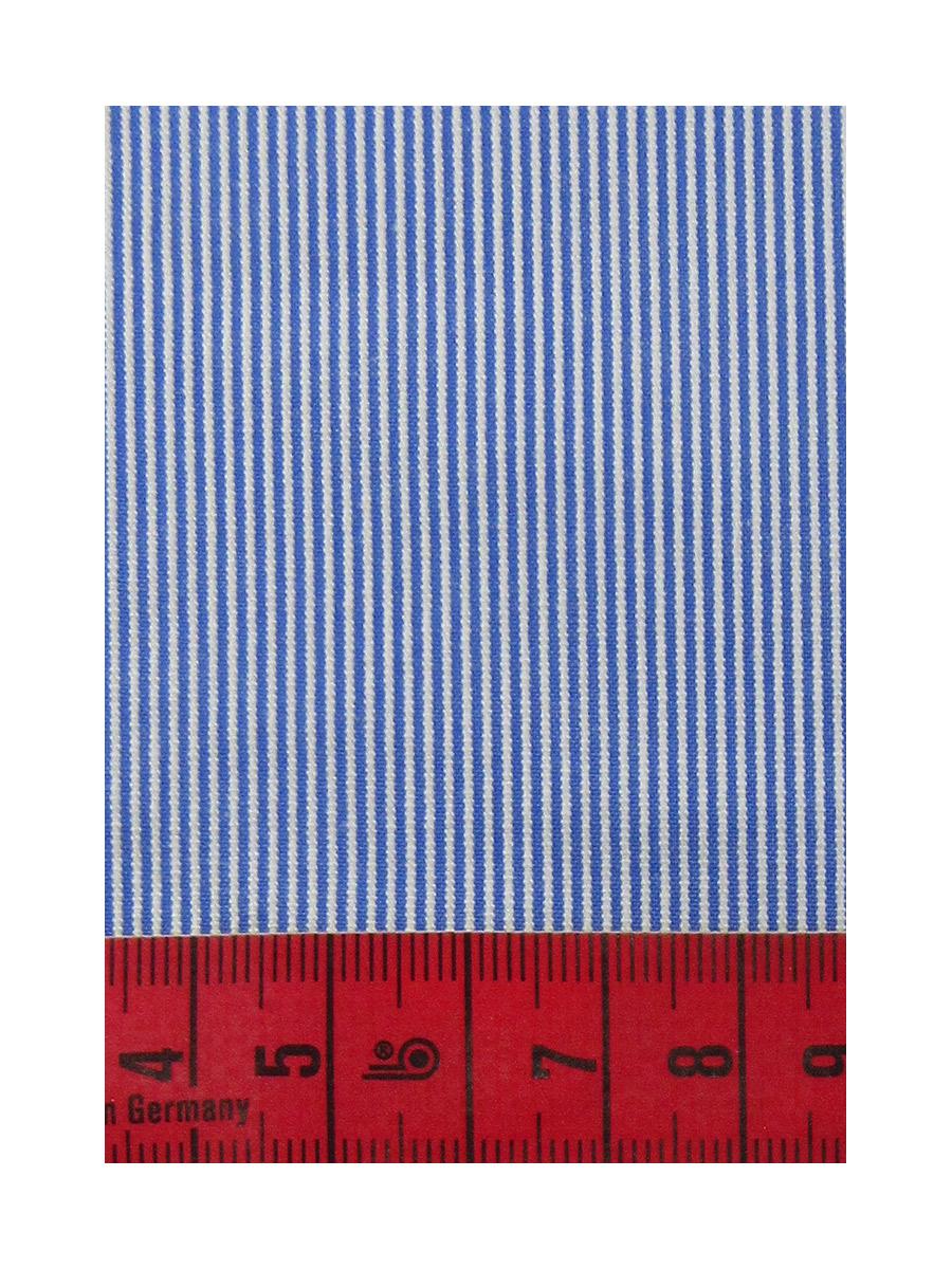 ZN516356-w
